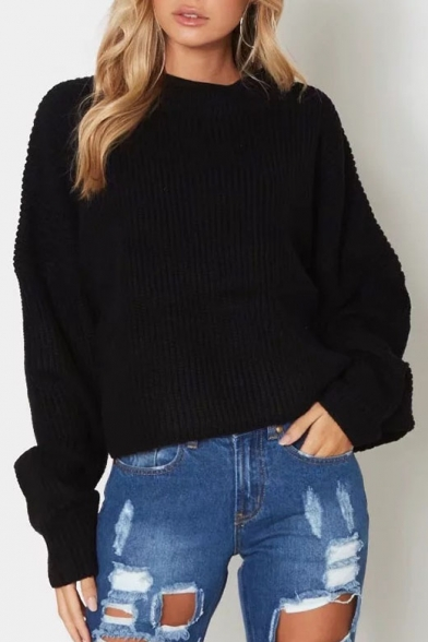 Simple Crew Neck Long Sleeves Ribbed Knitted Pullover Sweater