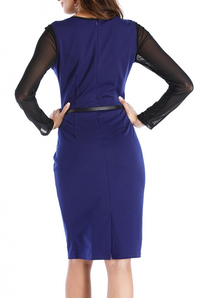 Chic Color Block Mesh Panel Long Sleeve Round Neck Belted Waist Dress