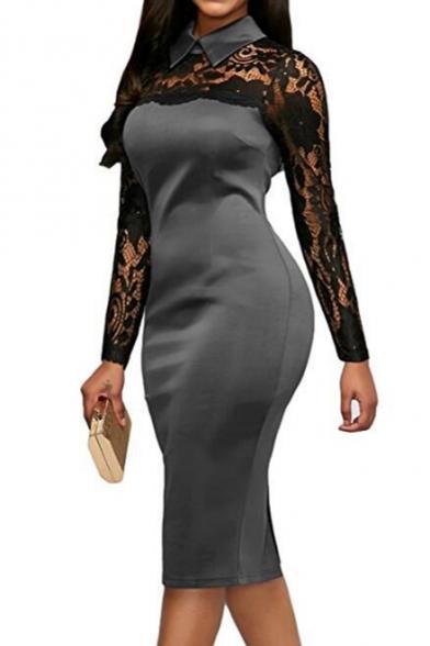 Floral Sheer Lapel Collar Lace Insert Long Sleeve Midi Pencil Dress