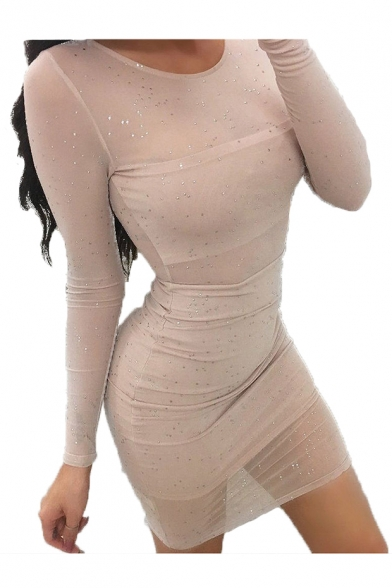 Round Neck Long Sleeve Polka Dot Sheer Mesh Mini Bodycon Dress