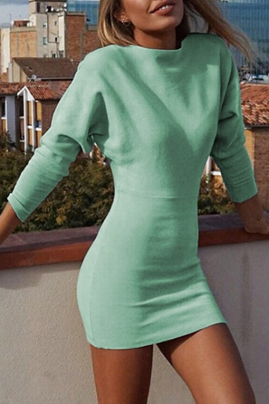 Simple Long Sleeve Crewneck Pain Bodycon Mini Dress