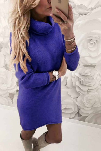 Warm Long Sleeve High Neck Plain Mini Sheath Mini Knit Dress
