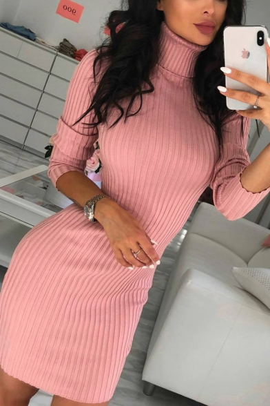 Sexy Long Sleeve High Neck Plain Mini Bodycon Dress