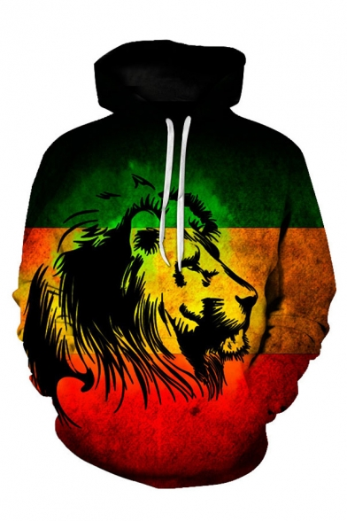 Image of 3D Abstract Lion Pattern Long Sleeve Colorblock Men's Green Hoodie