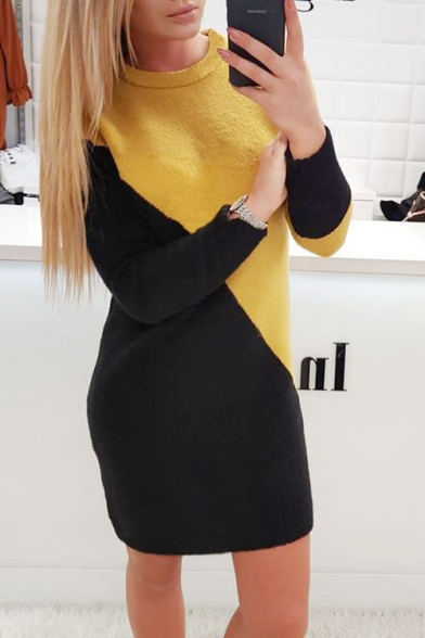 Ladies's Colorblocked Long Sleeve Crew Neck Knit Shift Mini Dress