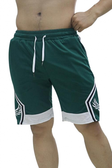 Trendy Striped Wing Pattern Color Block Fast Drying Mens Drawstring Sport Running Shorts