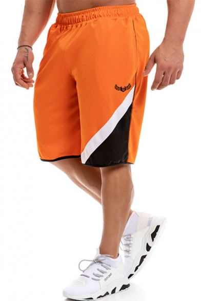 Men's Summer Trendy Colorblock Logo Embroidery Elastic Waist Mesh Cloth Quick-drying Beach Athletic Shorts