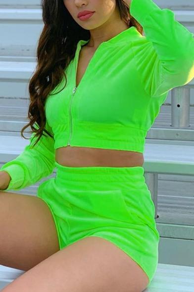 Popular Stand Collar Zip Up Crop Coat with Elastic Waist Shorts Plain Velvet Co-ords