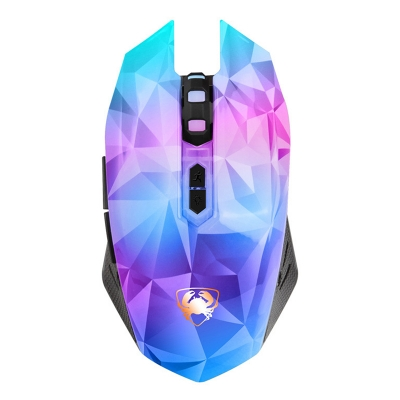computer mouse