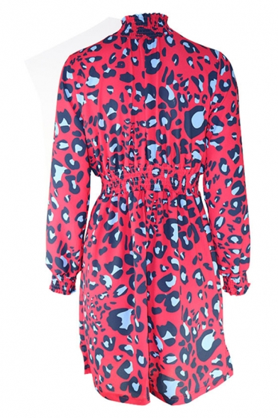 Trendy Ladies Long Sleeve Mock Neck Leopard Print Stringy Selvedge Gathered Waist Mid Pleated A-Line Dress