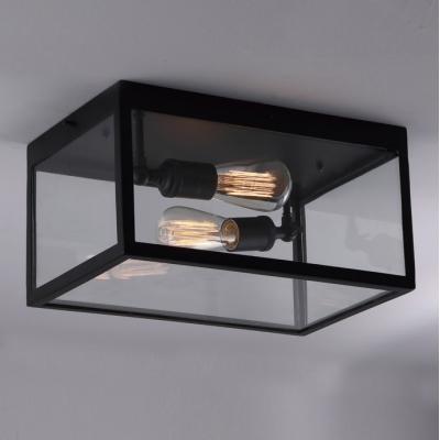 2 Light Double Clear Glass LED Ceiling Light