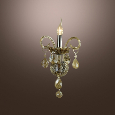 Wonderful Crystal Embraces Single Light Wall Sconce Formed an Impressive Look