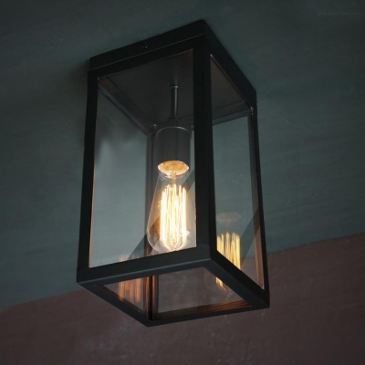 Metal/Clear Glass Cuboid Shade Single Light Indoor/Outdoor Flushmount LED Ceiling Light