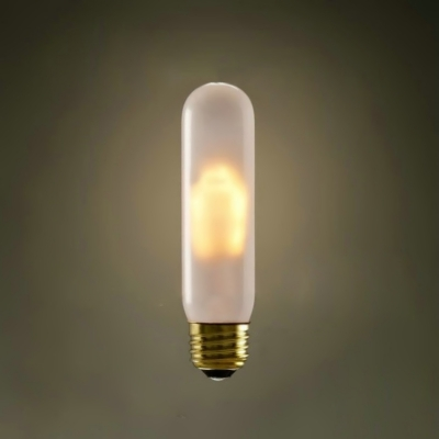 Frosted 220V E27 60W T10 Edison Bulb