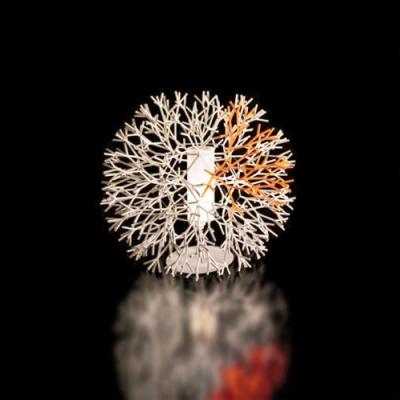 Novel Coral Designer Table Accent Lamp In Burst Shape