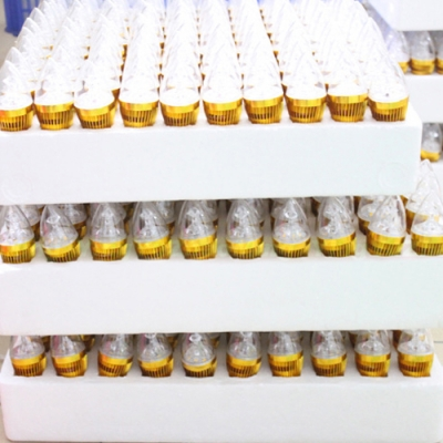 10Pcs 6LED-5730SMD E14 3W 180° 240lm Warm White