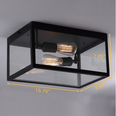 2 Light Double Clear Glass LED Ceiling Light