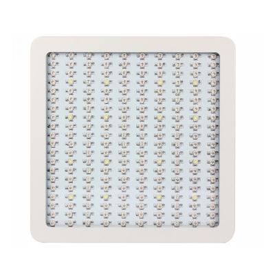 Image of 2000W LED Grow Light Full Specturm 200 LEDs 30000LM - White