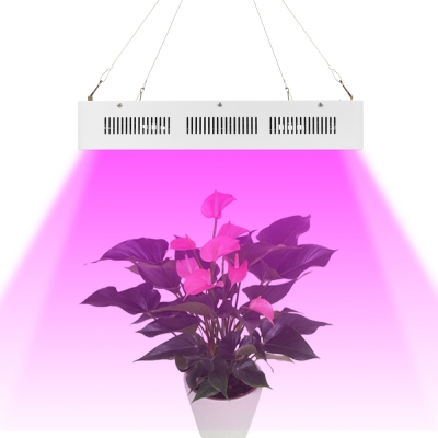 3000W LED Grow Light Full Specturm 300 LEDs 45000LM - White