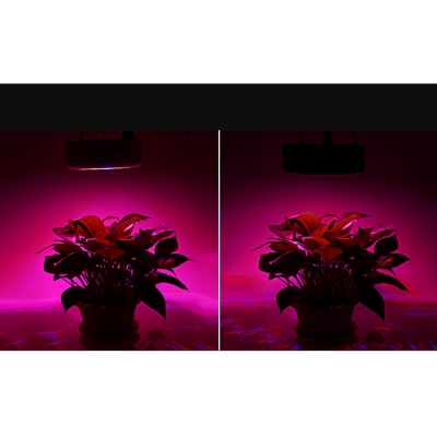UFO 90W Full Spectrum LED Grow Light 90 LEDs 4050LM - White