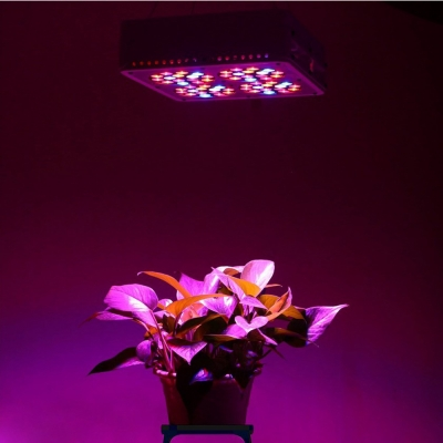 180W Apollo Series Led Grow Light Full Specturm 60 LEDs - Red