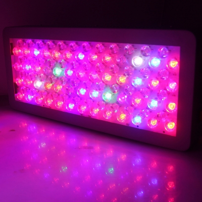 300W Dimmable LED Grow Light Full Spectrum 100 LEDs - Gray