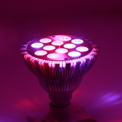 E27 12W Full Spectrum LED Plant Grow Lights Bulb 12 LEDs
