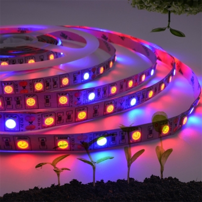 12w waterproof led grow lights led strip plant growth light full spectrum 5m