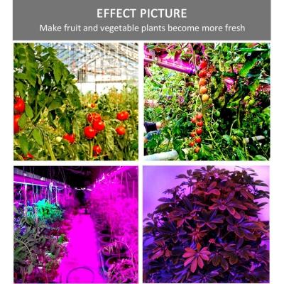 12w Waterproof Led Grow Lights Led Strip 5050 Plant Growth