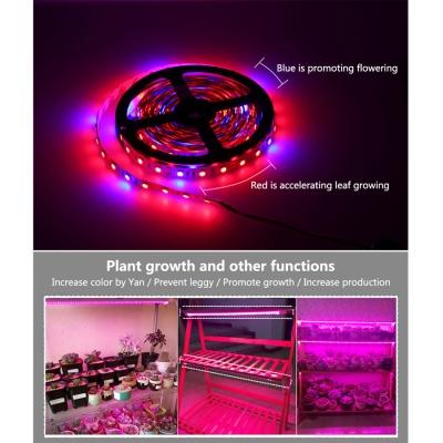 12W Waterproof LED Grow Lights LED Strip 5050 Plant Growth Light Full Spectrum (5m/lot)