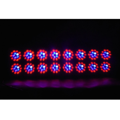 720W Apollo Series Led Grow Light Full Specturm 240 LEDs