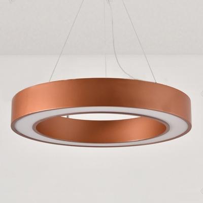 Decorative Antique Golden Modern Led Lights Halo Ring Led Lights Acrylic Lampshade 15.75
