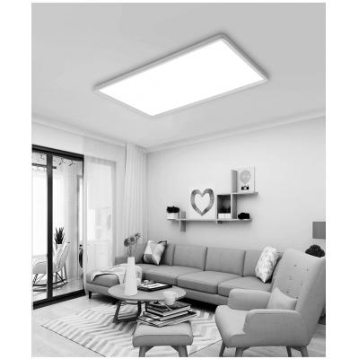 Minimalist Acrylic Lampshade High Output 32W Led Rectangle Flush Mount Light Flat Panel Led Recessed Lighting in Black/White with Warm White Light