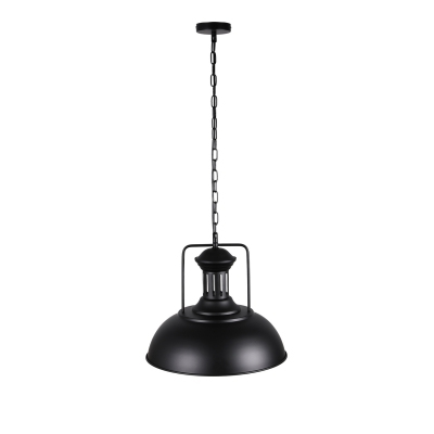 Industrial Black Finish 1 Light Bowl Shade LED Pendant
