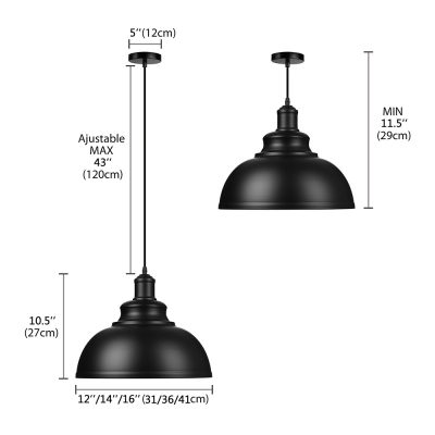 Industrial Pendant Light with 12'/14