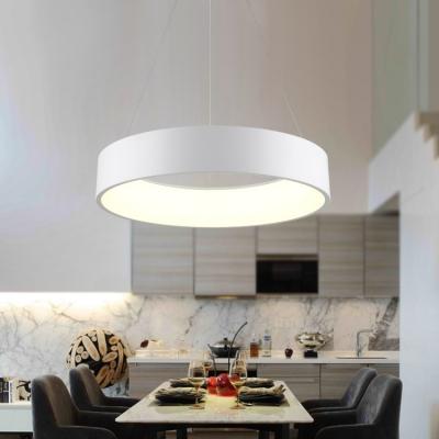 wholesale dealer 84074 56019 Modern Nordic Hoops LED Pendant Light Metal Acrylic Single Pendant