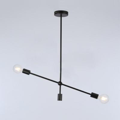 Open Bulb Chandelier Light Modern Fashion Metallic 2/4 Light LED Hanging Light in Black