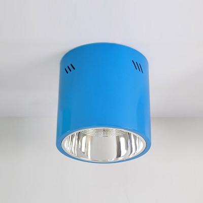 Cylinder 1 Head Flush Light Blue/Green Metal LED Ceiling Lamp for Nursing Room
