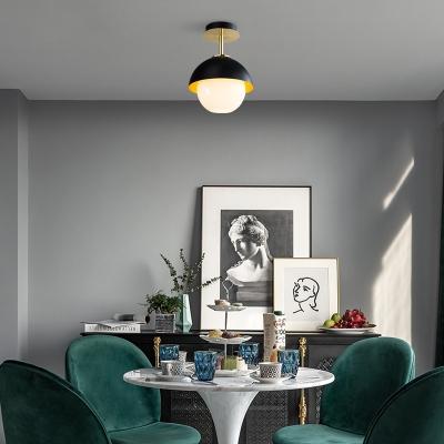Globe Shade Dining Room Ceiling Light Glass 1 Bulb Modern Stylish Semi