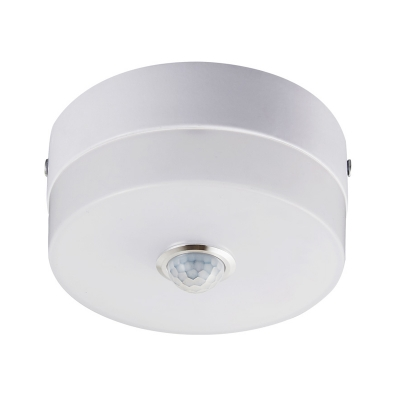 Modern White LED Ceiling Mount Light Drum Motion Sensor & Dusk to Dawn Sensor Spot Light for Stair