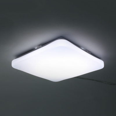 Porch Led Ceiling Mount Light Acrylic