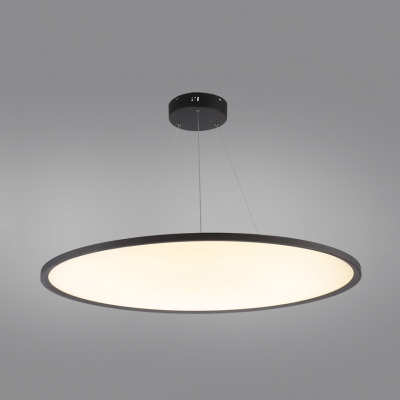 Slim Panel Round Ceiling Light Acrylic LED Pendant Light in Warm White/White for Study Room