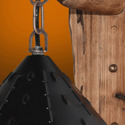 Rustic Stylish Gazebo Hanging Wall Sconce 1 Bulb Metal Sconce Light in Black for Restaurant