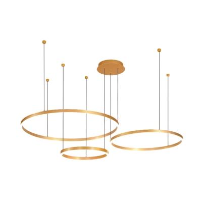 Brass Multi Ring Hanging Ceiling Light Modernism Metal Led Pendant Light for Home