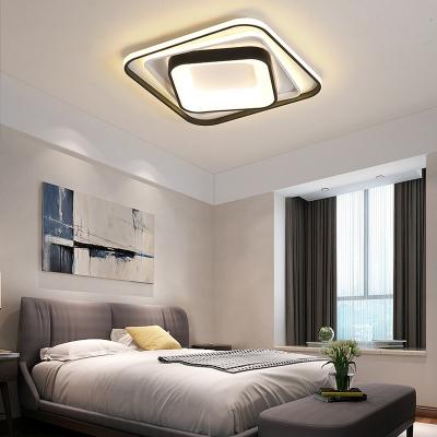 Metal Frame Ceiling Flush Light Modernism Led Indoor Ceiling Light for Living Room