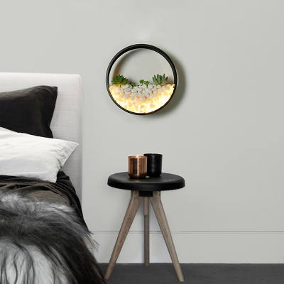 Circle Wall Lighting Modern Metal Led Wall Mouunt Light with Artificial Succulents