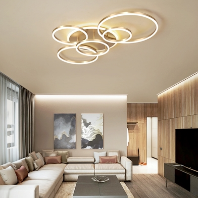 2/3/5/6 Lights Circular Ring Flush Lighting Mid Century Modern Led Brass Flush Ceiling Light in Warm/White