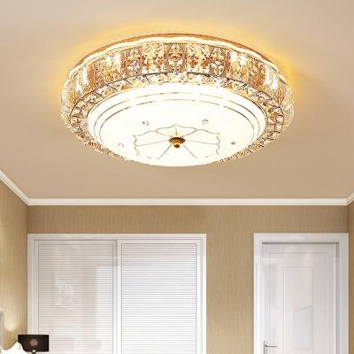 Modern Luxury Led Flush Ceiling