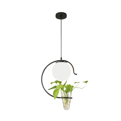 Gold/Black 1 Head Hanging Pendant Industrial Milk White/Smoke Grey Glass Globe Ceiling Lamp with Plant Deco