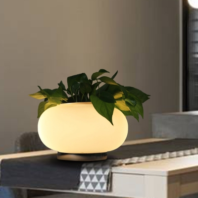 Oval Bedroom Table Light Industrial Opal Glass LED White Night Lamp with Plant Decoration